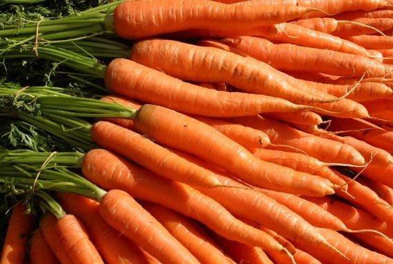 Как получить урожай моркови