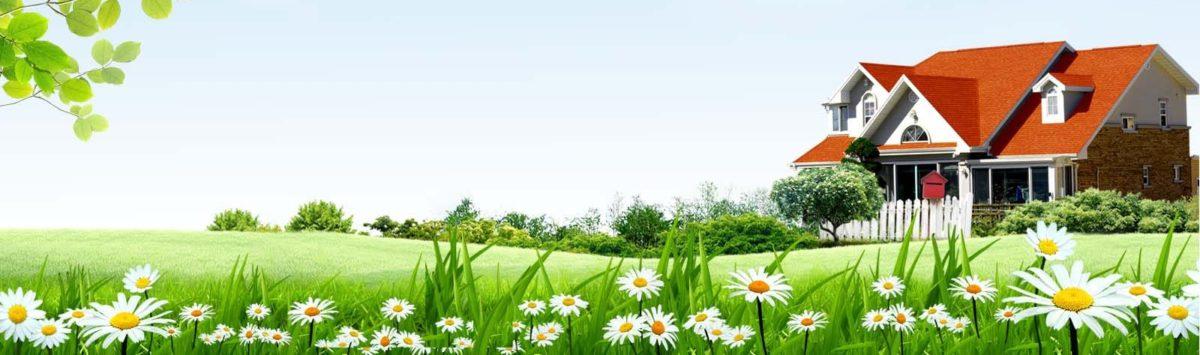 Цветочки, сад и огород